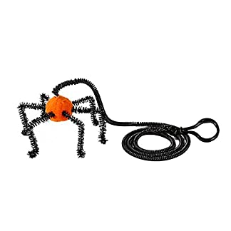 jweal cat toy, playing rope bat spider finger cat teasing toy pet small bell spring halloween xmas gift for kids/friends cat toy (orange) Jweal Cat Toy, Playing Rope Bat Spider Finger Cat Teasing Toy Pet Small Bell Spring Halloween Xmas Gift for Kids/Friends Cat Toy (Orange) 41RtVaTFOjL