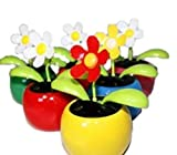 HAAC 4er Set Solar Wackelblume Blume