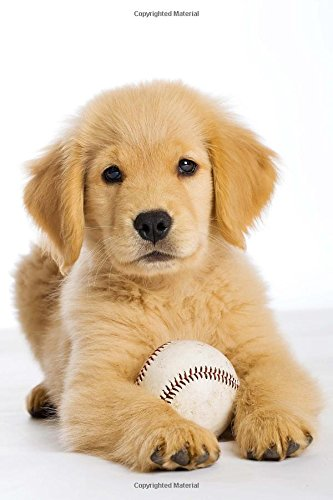 Golden Retriever Puppy with a Baseball Journal: 150 page lined notebook/diary (Baseball Retriever Golden)