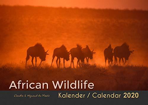 AFRICAN WILDLIFE 2020 - Afrika Wildtierkalender (A3 Querformat): Fotokalender der großartigen Wildtiere Afrikas in wunderschönen Lichtstimmungen.