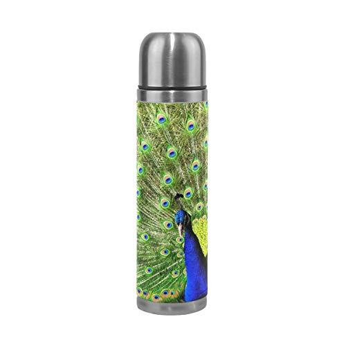 Aurora Series Peacock Blue LIITA Stainless Steel Travel Water Bottle-12 oz Portable Coffee Mug Sports Bottle for Kids/& Adult
