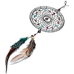 Pixnor Dream Catcher artesanal atrapasueños llavero colgante decoración 11 tallo colgante adorno regalo del arte