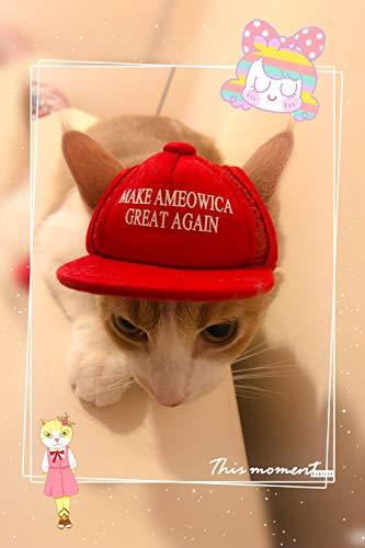 Unekorn Ultra-Komfort, verstellbar, Macht Ameowica Great Again MAGA Trump Slogan Katzenhut Kostüm für Halloween-Partys und Instagram-Bilder