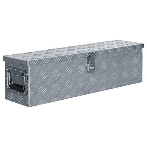 vidaXL Boîte en Aluminium Argenté Outils Caisse à Outils Coffre de Rangement