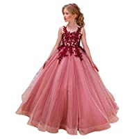 CQDY Flower Girl Lace Dresses Wedding Bridesmaid Flower Girl Dress Formal Party Pageant Prom Ball Gown Christmas Birthday Gifts Red