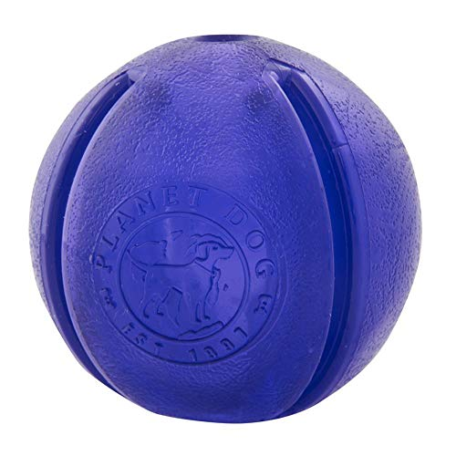 Planet Dog Orbee-Tuff Guru Treat Ball Purple
