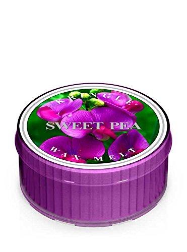 Kringel Sweet Pea Duftkerze Tageslicht-Homewares China Sweet Pea