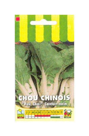 Les Graines Bocquet - Graines De Chou De Chine Canton Nain Pak Choi - Graines Potagères À Semer - Sachet De 3Grammes