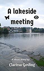 A lakeside meeting: A short story