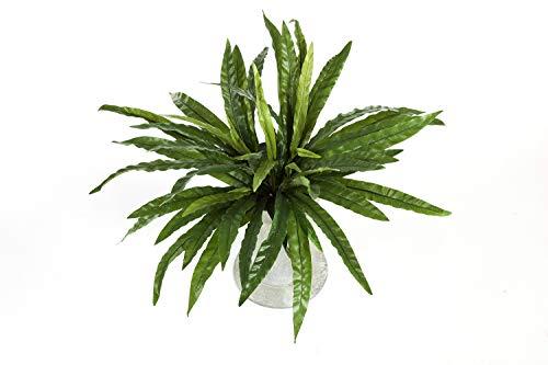 artplants Set 'Kunstpflanze Nestfarn + Gratis UV Schutz Spray' - Künstlicher Farn SANDREO, auf Steckstab, grün, 55cm, Ø 65cm
