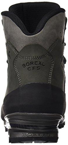Boreale grigio