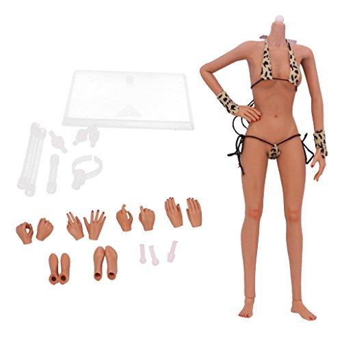 Weibliche Bodys (Gazechimp 1/6 Nahtlose Mittlere Brust Körper Puppe Weibliche Figur (NO HEAD) 28 Gelenke - Weizen)