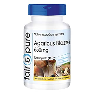 Agaricus Blazei Murrill Extrakt 650mg (ABM - Agaricus Blazei Murill) - Vitalpilz - vegan - natürlich - ohne Magnesiumstearat - 120 Kapseln