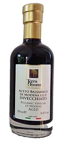 Authentisch und Hochwertig 10 Jahre alt Aceto Balsamico di Modena INVECCHIATO - IGP -250ml - 10 Jahre Gealterter Balsamico Essig aus Modena, Italien - Italienische Spezialität - Authentische Feinkost und Delikatessen - Made in Italy - Aged Balsamic Vinegar of Modena - Dressing
