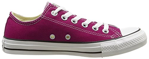 CONVERSE Chuck Taylor All Star Seasonal Ox, Unisex-Erwachsene Sneakers Pink (rose Sapphire)