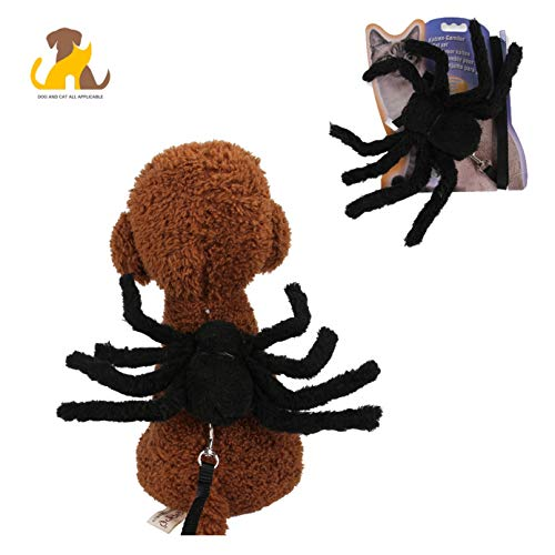 Spinne Fliege Und Kostüm - Nwayd Halloween Haustier Hund Katze Kostüme,Spinne Kostüm,Haustierfeste, Wochenendfeste, Geburtstagsfeste, Fotoshootings, Alltagskleidung oder sonstige Anlässe.Black