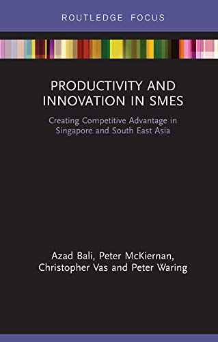Productivity and Innovation in SMEs: Creating Competitive Advantage in Singapore and South East Asia (Routledge Focus on Environment and Sustainability) (English Edition)