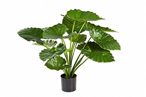 set-2-x-kunstpflanze-alocasia-calidora-saloni-mit-15-blattern-grun-75-cm-kunstliche-zimmerpflanzen-a