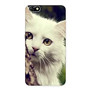 Delighted Hiding Cat Multicolor Back Case Cover for Honor 4X