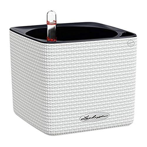 LECHUZA CUBE Color 14 13380 Kräutertopf, Hochwertiger Kunststoff, Inkl. Stick-Bewässerungssystem, für Innenraumbegrünung geeignet, weiß