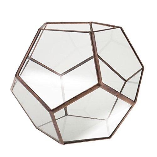 Mini Glas Terrarium Geometrisches Glas Sukkulente Pflanzen Pflanzgefäß Deko - 15 x 15 x 15cm -