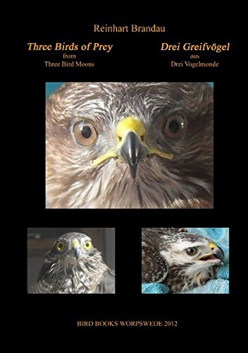 Three Birds of Prey - Drei Greifvögel (Bird Books Worpswede)