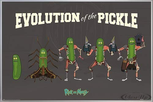 Close Up Rick and Morty Poster Evolution of The Pickle (62x93 cm) gerahmt in: Rahmen Silber matt
