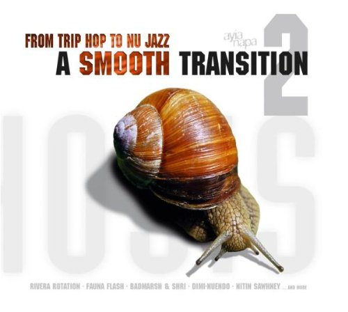 From Trip Hop To Nu Jazz - A S