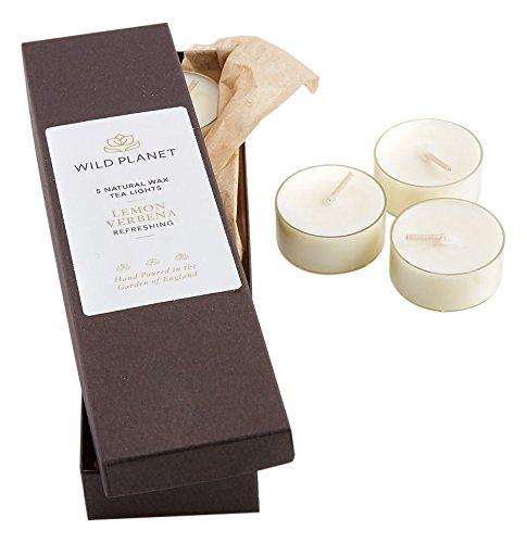 Wild Planet Products Ltd Lemon Verbena Box of 5 Tea Lights, White