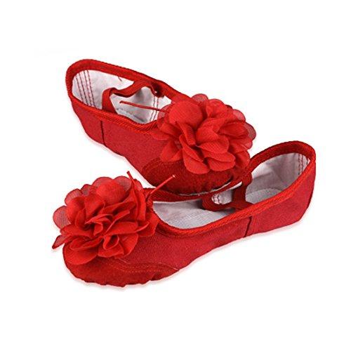 en Ballettschuhe Schläppchen Turnschläppchen Tanzschuhe mit Blume Design für Kinder (Rote Blumen-mädchen-schuhe)