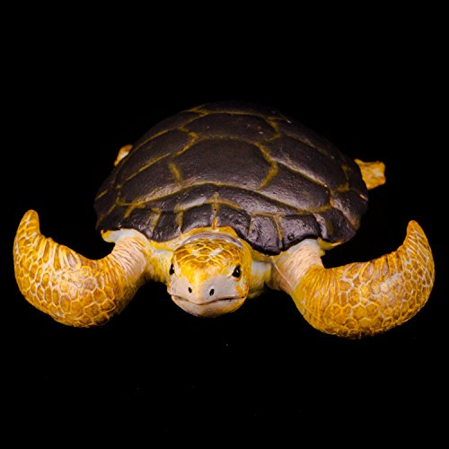 CollectA Loggerhead Turtle