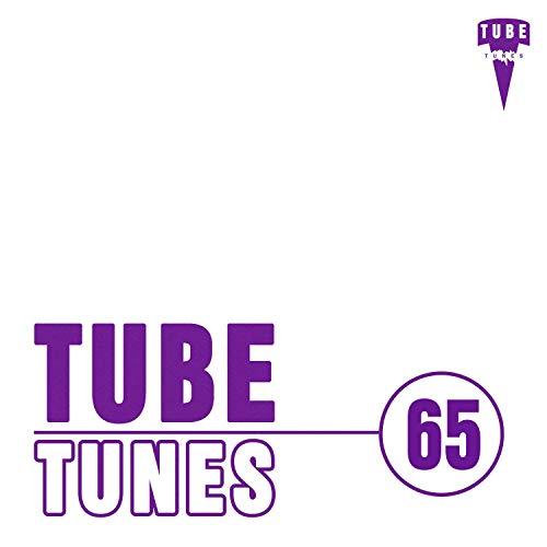 Tube Tunes, Vol.65 - - Taste Stereo