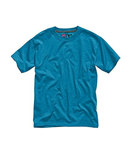 Hanes Beefy Jersey Short Sleeve Crew Neck Kids T-Shirt (X-Large (14/16), Ultra Blue Heather) (Youth Crew Tee)