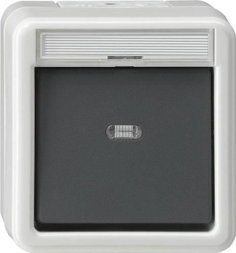 Gira 015230 Wipptaster mit Meldekontakt Wassergeschützt Aufputz, grau
