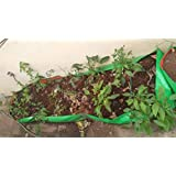 BIO BLOOMS AGRO INDIA PRIVATE LIMITED Terrace Gardening Very Long & Big Grow Tub 10x2x1 Feet 200 GSM Long Life, Uv…