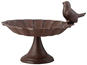Fallen Fruits FB164 Bird Bath