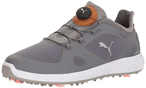 Puma Men s Ignite Pwradapt Disc Golf Shoe  Quiet Shade Quiet Shade  10 UK