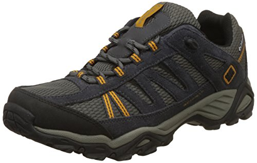 Columbia North Plains Wp, Chaussures Multisport Outdoor homme, Marron (231), 45 EU (11 UK) Gris (030)