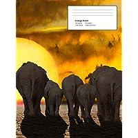Help!: Elephants - Climate Crisis