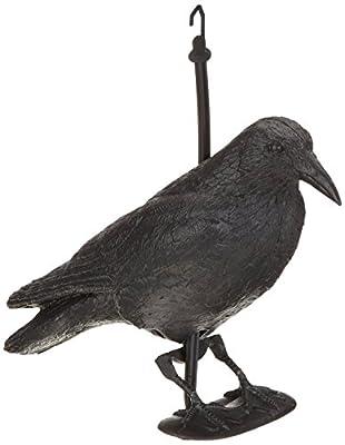 Rabe / Krähe / Taubenschreck / Vogelschreck / Vogelscheuche 38 cm schwarz 1 - 12 Stück Exclusiv hergestellt für Hillfield von Hillfield - Du und dein Garten