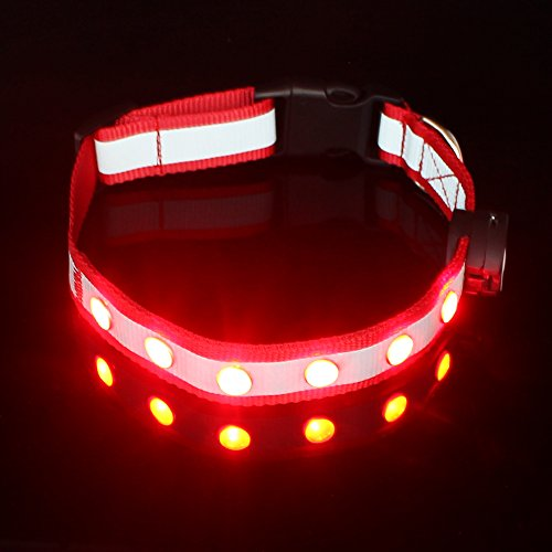 Pawow-LED-USB-Rechargeable-Dog-Collar-Night-Safety-Collar-Red-Large