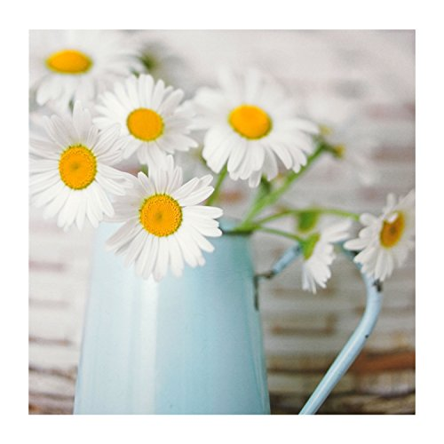 hallmark-blank-card-daisies-small-square