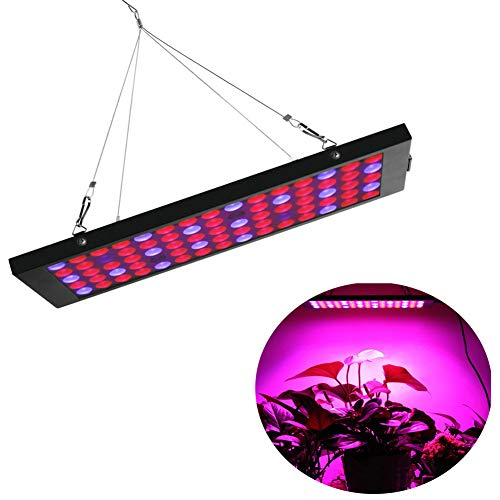 YLOVOW LED Grow Light Full Spectrum Grow Lamp Cuerda