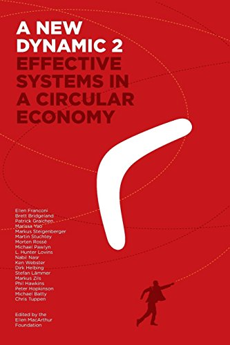 A New Dynamic 2- Effective Systems in a Circular Economy