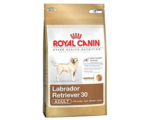 Royal Canin Labrador Retriever 30 Adult Dog Food