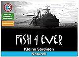 Fish 4 Ever Brisling Sardines in Spring Water 105 g (Pack of 6)