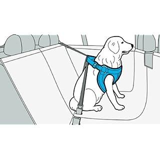 BMW Hundesicherheitsgeschirr