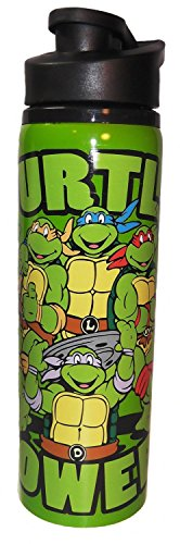 Power Teenage Mutant Ninja Turtles Stainless Steel Water Bottle ()