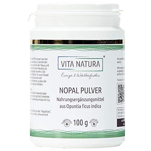 Vita Natura Nopal Feigenkaktus Pulver, Opuntia ficus indica 1er Pack (1 x 100 g) -