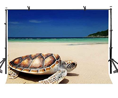 EdCott 7X5ft Schildkröte Hintergrund Blauer Himmel Küste Strandschildkröten Fotografie Kulissen Fotostudio Hintergrund Requisiten LYGY176